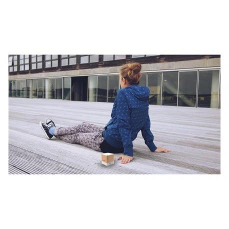 Głośnik bluetooth Blaupunkt BT02GOLD (FM)
